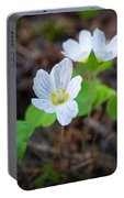Common Wood Sorrel Portable Battery Charger