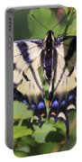 Common Yellow Swallowtail Portable Battery Charger