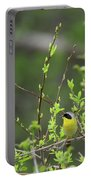 Common Yellowthroat Portable Battery Charger
