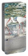 Companions On Coquina Beach Portable Battery Charger