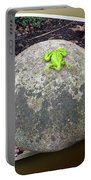 Concrete Toad Stool Portable Battery Charger