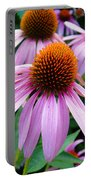 Three Coneflowers  Portable Battery Charger