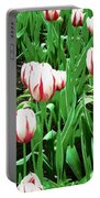Confederation Tulips Portable Battery Charger