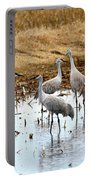 Congregating Sandhill Cranes Portable Battery Charger