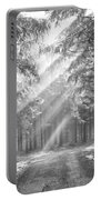 Conifer Forest In Fog Portable Battery Charger