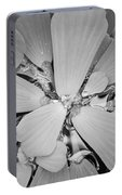 Conservatory Nature In Black And White 1 Portable Battery Charger