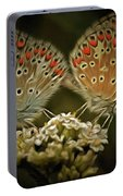 Contact - Detail Of The Butterflies Portable Battery Charger
