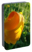 Contemporary Orange Poppy Flower Unfolding In Sunlight 10 Baslee Troutman Portable Battery Charger