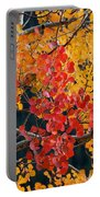 Contrasting Aspen Portable Battery Charger