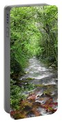 Cool Green Stream Portable Battery Charger
