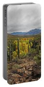 Coon Creek Looking South Portable Battery Charger