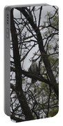 Cooper's Hawk Perched In Tree Portable Battery Charger