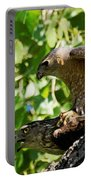 Cooper's Hawks Mating Portable Battery Charger