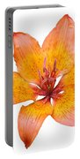 Coral Colored Lily Isolated On White Portable Battery Charger