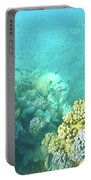 Coral Portable Battery Charger by Debbie Cundy