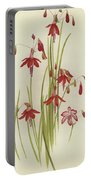 Coral Drops  Bessera Elegans Portable Battery Charger
