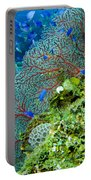 Coral In Truk Portable Battery Charger