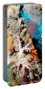 Coral Pillars Portable Battery Charger
