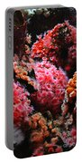 Coral Polyps Portable Battery Charger