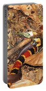 Coral Snake Snack Portable Battery Charger