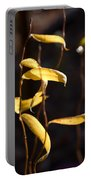 Corkscrew Willow Portable Battery Charger