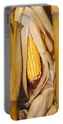 Corn Cobb On Stalk Portable Battery Charger