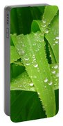Corn Leaves After The Rain Portable Battery Charger