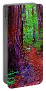 Cosmic Redwood Trail On Mt Tamalpais Portable Battery Charger