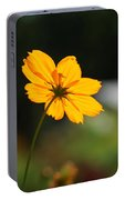 Cosmos Field Portable Battery Charger
