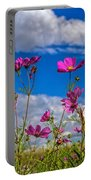 Cosmos Sky Portable Battery Charger