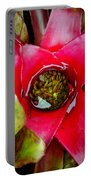Costa Rica Flower Portable Battery Charger