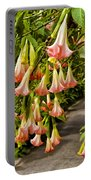 Costa Rica Wedding Bells Portable Battery Charger