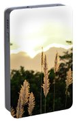 Cotton Candy Sunset 2 Portable Battery Charger