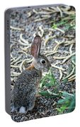 Cottontail Rabbit 4320-080917-1 Portable Battery Charger