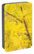 Cottonwood Colors  Portable Battery Charger