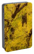 Cottonwood Fall Foliage Colors Abstract Portable Battery Charger