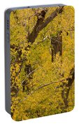 Cottonwood Fall Foliage Colors Portable Battery Charger