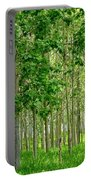 Cottonwood Grove Portable Battery Charger by Will Borden