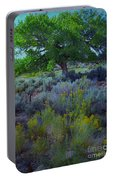 Cottonwood Tree In Old Field Portable Battery Charger