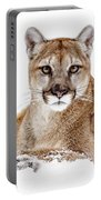 Cougar On White Portable Battery Charger