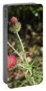 Coulter's Thistle Portable Battery Charger