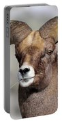 Country Boy Ram Portable Battery Charger