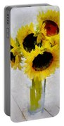 Country Sun I Portable Battery Charger