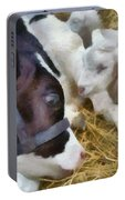 Cow And Lambs Portable Battery Charger