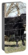 Cow Eating  Portable Battery Charger