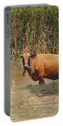 Cow In The Field Portable Battery Charger