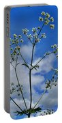 Cow Parsley Blossoms Portable Battery Charger