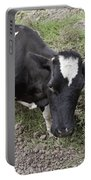 Cow Tow Portable Battery Charger