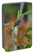 Cowbird Feasting On Milo And Shiloh Military Park In Tennessee Portable Battery Charger