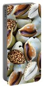 Cowrie Portable Battery Charger